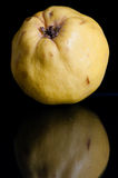 Quince fruit. Sitting on a black table with a reflection Stock Image