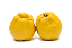 Quince. Fruit on white background royalty free stock images