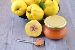 Quince Royalty Free Stock Photo