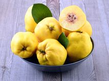 Quince, Royalty Free Stock Photos