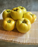 Quince fruits royalty free stock image