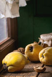 Quince and Honey Royalty Free Stock Photo