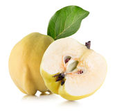 Quince isolated on the white background.  Royalty Free Stock Photo