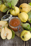 Quince jelly. Fresh quince jelly in a preserving glass Royalty Free Stock Photography