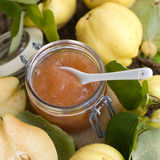 Quince jelly Stock Images