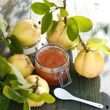 Quince jelly Royalty Free Stock Photography