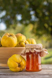 Quince Jelly. In jar with fruit, outdoors Royalty Free Stock Photos