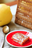 Quince jelly on red ceramic plate. Stock Photography