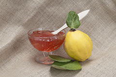 Quince jelly Stock Photography