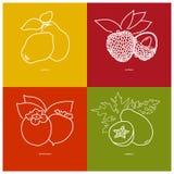 Quince,  Lichee, Persimmon, Papaya Stock Image