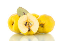 Quince Stock Images