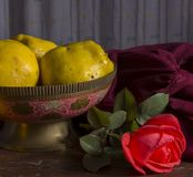 Quince and old Indian vase. Vase, rose, quince Royalty Free Stock Images