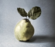 Quince pear Stock Images