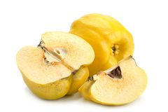 Quince ripe fruit royalty free stock photography