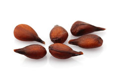 Quince seed Stock Images