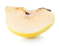Quince slice isolated on the white background Stock Images