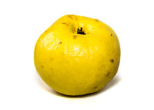 Quince on white. Quince isolated on white background Royalty Free Stock Photos