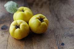 Quince. Yellow quince on wooden table royalty free stock photo
