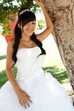 Quinceanera Birthday Girl Royalty Free Stock Photo