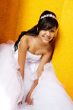 Quinceanera Birthday Girl Stock Photography