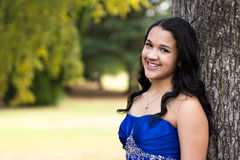 Quinceanera Dress Stock Images
