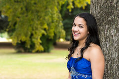 Quinceanera Dress Royalty Free Stock Photography