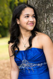 Quinceanera Dress Stock Image