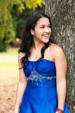 Quinceanera Dress Stock Photos