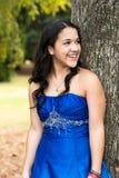 Quinceanera Dress Stock Photos