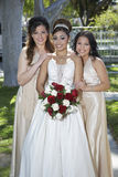 Quinceanera Standing With Female Friends Stock Images