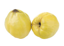 Quinces Stock Photography