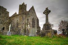 Quinn Abbey. With cemetery - Ireland Stock Photos