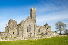 Quinn abbey ruins Stock Images
