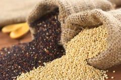 quinoa ακατέργαστο Στοκ φωτογραφία με δικαίωμα ελεύθερης χρήσης