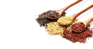 Quinoa Κόκκινα, γραπτά quinoa σιτάρια ξύλινα κουτάλια που απομονώνονται στο άσπρο υπόβαθρο τρόφιμα υγιή στοκ φωτογραφίες με δικαίωμα ελεύθερης χρήσης