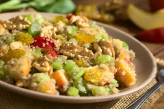 Quinoa σαλάτα Waldorf Στοκ φωτογραφία με δικαίωμα ελεύθερης χρήσης