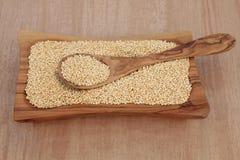 Quinoa σιτάρι Στοκ Φωτογραφίες