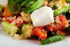 Σαλάτα σπανακιού με quinoa και τις οργανικές ντομάτες, τις μαριναρισμένες ντομάτες και τις ντομάτες στοκ εικόνα