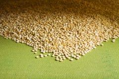 quinoa Obrazy Royalty Free