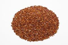 Quinoa Royalty Free Stock Image