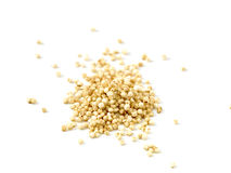 Quinoa Royalty Free Stock Image