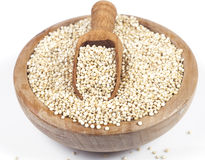 Quinoa Photo stock