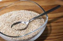 Quinoa Royalty-vrije Stock Afbeeldingen