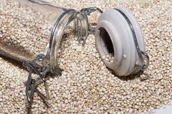 Quinoa Photo libre de droits