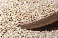 Quinoa Stock Foto's