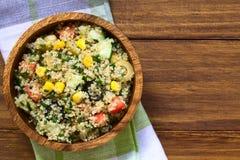 Quinoa και φυτική σαλάτα Στοκ εικόνα με δικαίωμα ελεύθερης χρήσης
