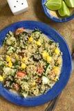 Quinoa και φυτική σαλάτα Στοκ Εικόνα