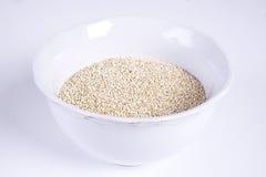 Quinoa Royaltyfri Fotografi