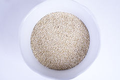 Quinoa Arkivfoton
