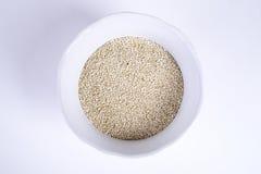 Quinoa Arkivbilder